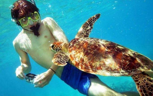 30 Туристически дестинации, които гарантират, че пътуването ви ще бъде незабравимо
