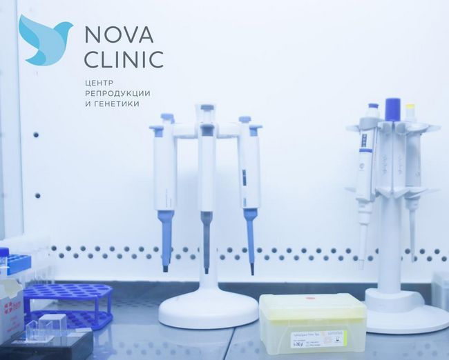етапи на развитието на IVF