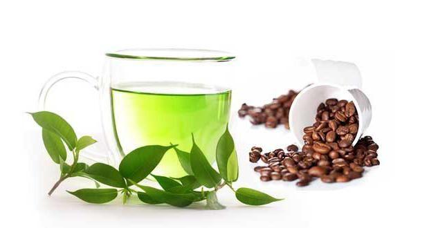 има ли много кофеин в зеления чай