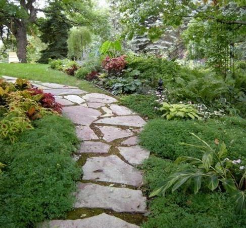 Форма за създаване на градински пътеки: съвети за използване