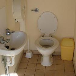 Знам съня: как изглежда тоалетната?