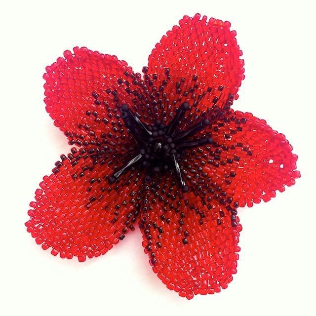 Колоритен цвят на маково семе