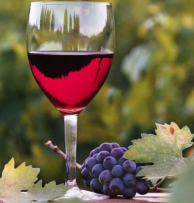 Абхазското вино на Апсна