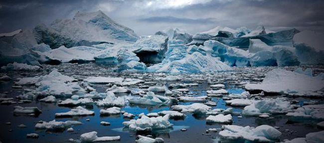 Океан звучи: 8 странни шума на Антарктида