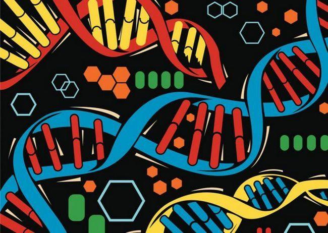 Около 500 човешки гени стават по-активни след смъртта!