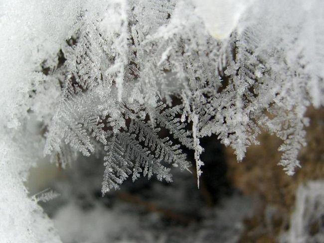 Защо са снежинките толкова различни по форма?