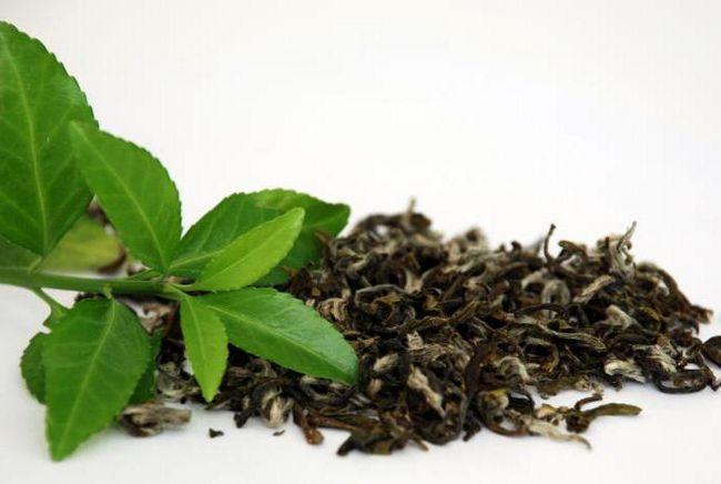 силен зелен чай