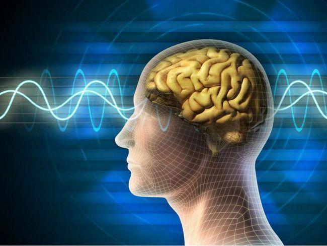 Човешкото съзнание може да бъде контролирано от древен вирус
