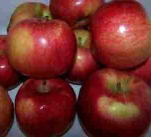 сушене на ябълки в микровълнова фурна