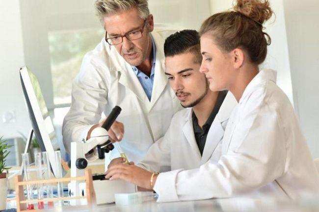 Учените успяват да създадат хибрид на човек и овца