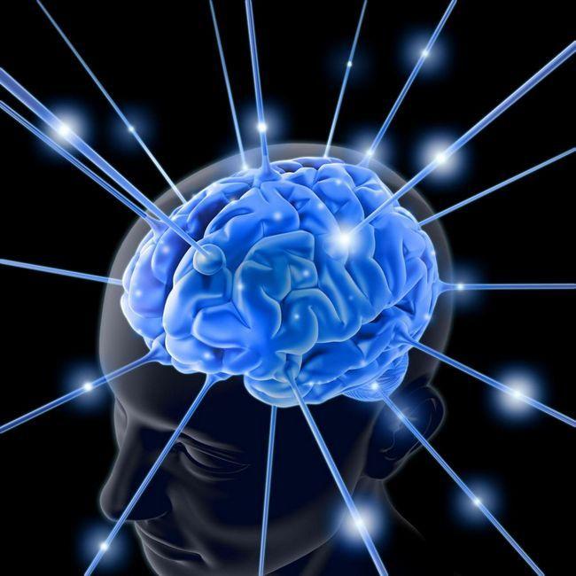 Ползи за мозъка