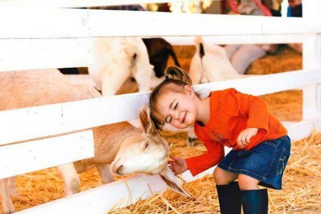 Искаш да станеш фермер! 13 снимки на невероятния живот в селото